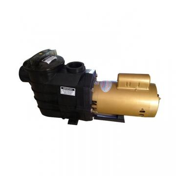 Vickers PV080R1K1A4NFDS+PGP505A0020CA1 Piston Pump