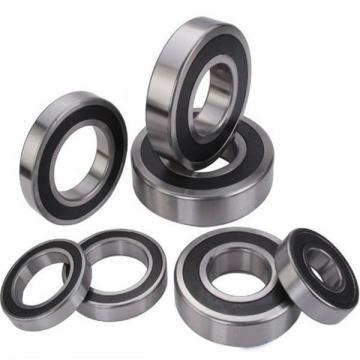 FAG NJ311-E-TVP2-QP51-C4  Cylindrical Roller Bearings